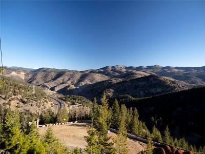 Evergreen Residential Lots & Land Active: Saddleback Drive