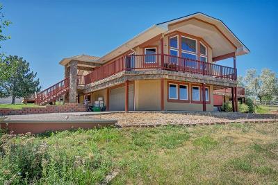 Castle Rock Single Family Home Active: 456 Margie Lane