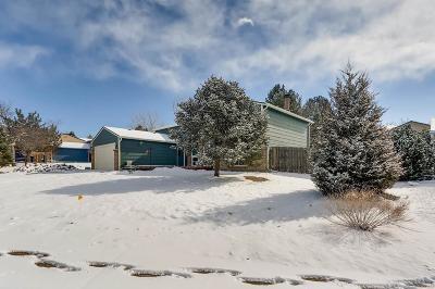 Castle Rock Single Family Home Active: 802 Park View Place