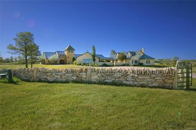 Larkspur CO Single Family Home Active: $4,800,000