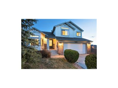 Pine Creek Single Family Home Under Contract: 3259 Sand Flower Drive