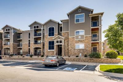 Erie Condo/Townhouse Under Contract: 1450 Blue Sky Way #12-305