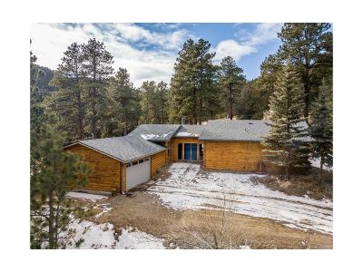 Evergreen Single Family Home Under Contract: 945 Beaver Brook Canyon Road