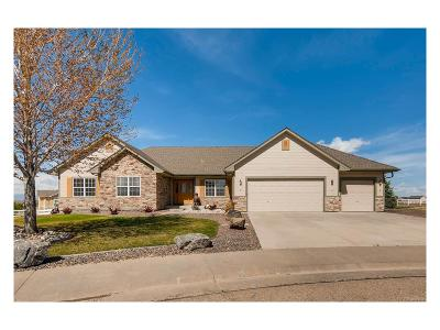 Fort Lupton Single Family Home Active: 131 Appel Court