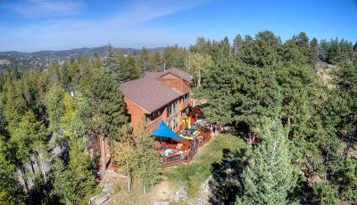 Evergreen Single Family Home Sold: 26262 Wolverine Trail
