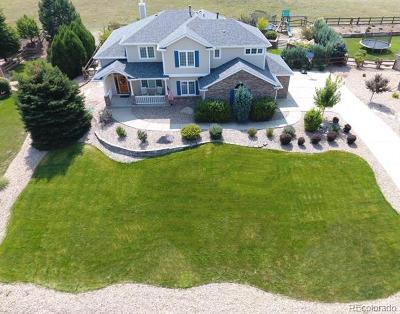 Castle Rock Single Family Home Active: 3129 Soaring Eagle Lane