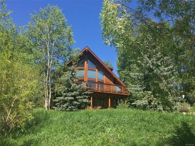 Steamboat Springs Single Family Home Active: 1070 Uncochief Circle