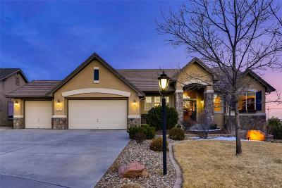Pine Creek Single Family Home Under Contract: 3726 Oak Meadow Drive