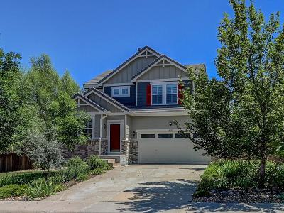 Douglas County Single Family Home Active: 600 Darby Court