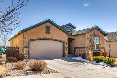 Pine Creek Single Family Home Under Contract: 4245 Apple Hill Court