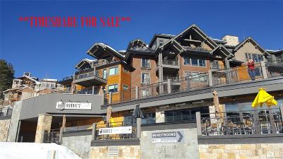 Summit County Condo/Townhouse Active: 1627 Ski Hill Road #1326B
