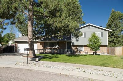 Colorado Springs Single Family Home Active: 6550 Brook Park Drive