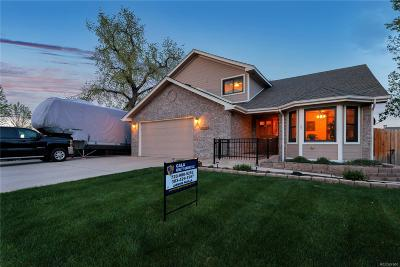 Arvada Single Family Home Active: 5198 Yank Court