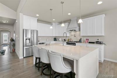 Hudson Single Family Home Active: 31381 East 161st Court