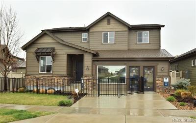 Longmont Single Family Home Active: 1317 Sunshine Avenue