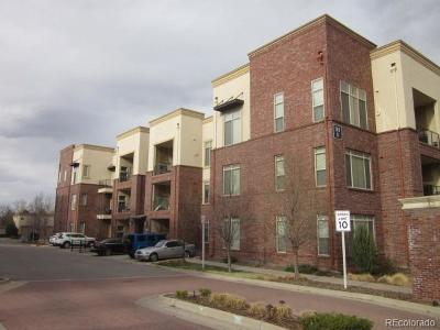 Englewood Condo/Townhouse Active: 307 Inverness Way #309