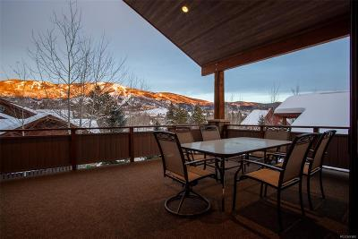 Steamboat Springs Condo/Townhouse Active: 1843 Montview Lane