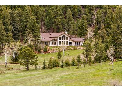 Evergreen Single Family Home Under Contract: 6520 Bluebell Lane