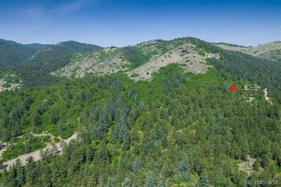 Residential Lots & Land Active: 9147 South Deer Creek Canyon Road
