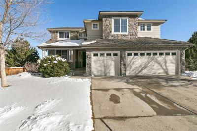 Littleton Single Family Home Under Contract: 9648 South Jellison Way