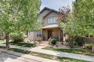 Longmont Single Family Home Active: 234 Sweet Valley Court