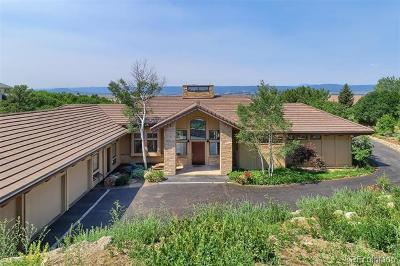 Castle Rock Single Family Home Active: 135 Capulin Place