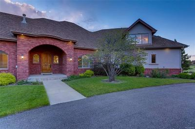 Douglas County Single Family Home Active: 6208 Hay Meadow Way