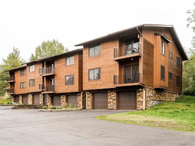 Steamboat Springs CO Condo/Townhouse Under Contract: $375,000