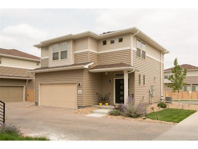 Castle Rock Single Family Home Under Contract: 4408 Elegant Street