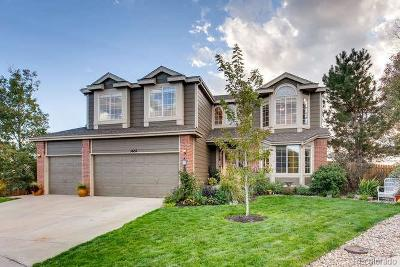 Aurora Single Family Home Under Contract: 5655 South Flanders Court