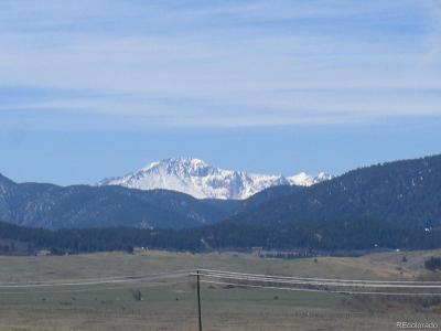 Douglas County Residential Lots & Land Active: 10686 South Spruce Mountain Road
