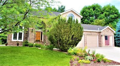 Fort Collins Single Family Home Active: 913 Alexa Way