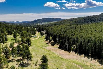Evergreen Residential Lots & Land Active: 34040 Buffalo Park Road