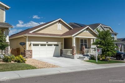 Castle Rock Single Family Home Active: 2499 Ambience Lane