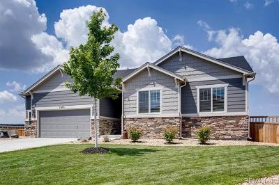Douglas County Single Family Home Active: 7075 Thundercloud Court