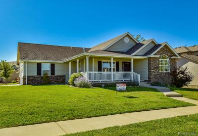 Greeley Single Family Home Active: 6206 West 15th Street