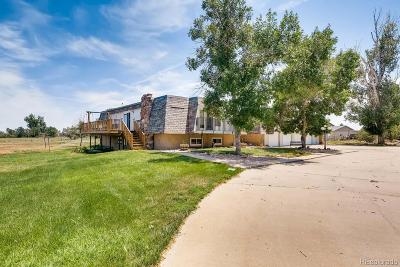 Adams County Single Family Home Active: 15866 Delta Court