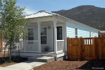 Buena Vista CO Single Family Home Active: $225,000