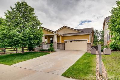 The Meadows Single Family Home Under Contract: 3356 Brushwood Drive