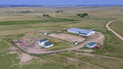 Kiowa Single Family Home Active: 32155 Cattle Circle