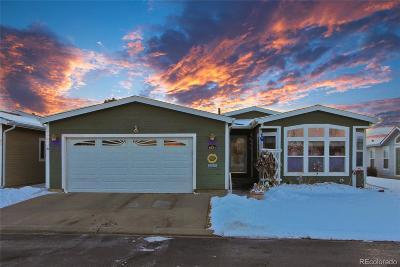 Frederick Single Family Home Under Contract: 6231 Audubon Street #194