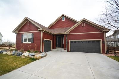 Erie Single Family Home Under Contract: 1101 Lasnik Street