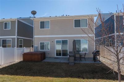 Denver Single Family Home Under Contract: 20721 Randolph Place