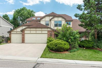 Highlands Ranch Single Family Home Active: 6762 Eagle Place