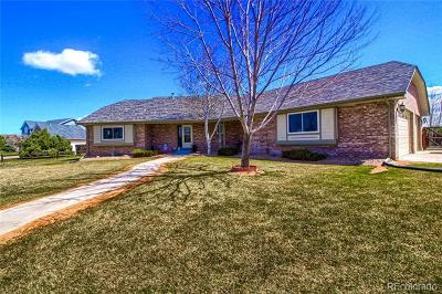 Brighton Single Family Home Active: 13809 East 133rd Drive