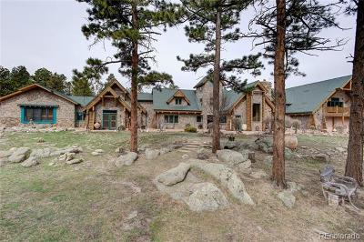 Nederland Single Family Home Active: 1260 Twin Sisters Road