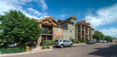 Littleton Condo/Townhouse Active: 8846 South Kline Street #302