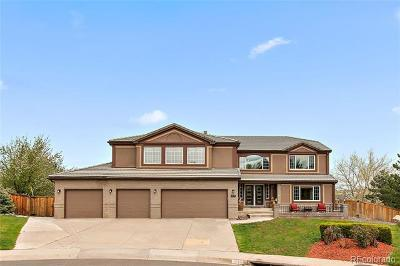 Highlands Ranch Single Family Home Active: 9717 Clairton Lane
