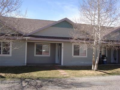 Salida Condo/Townhouse Under Contract: 614 Palmer Street #3