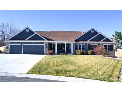 Littleton Single Family Home Under Contract: 13155 West Crestline Drive